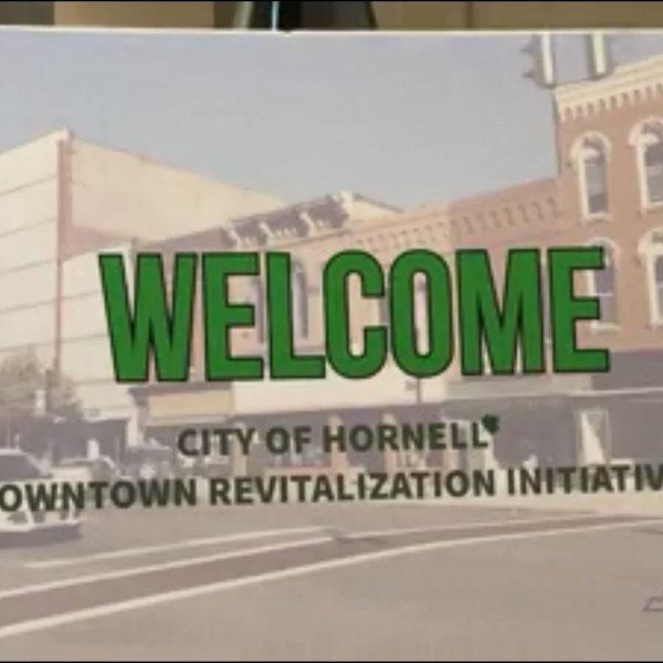 Hornell-DRI-Project